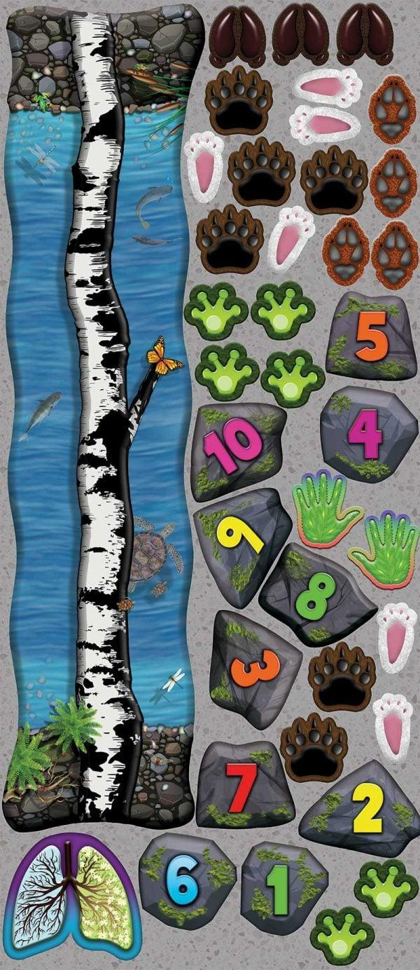Sensory-pathways-MOTHER-NATURE-DECALS
